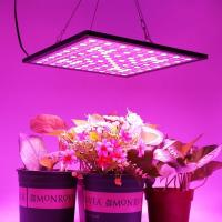 Quality Lightweight Energy Efficient Grow Lights Led Flowering Grow Lights 3 Years Warranty for sale