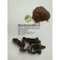 Buy cheap High Quality Natural Radix Rehmanniae Extract,Di huang root powder Extract product