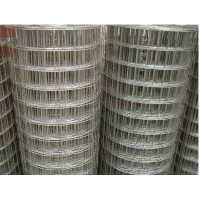 China 8mm 1 Inch By 1 Inch Electro Galvanised Welded Wire Mesh on sale