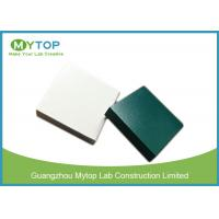 Epoxy Resin Worktop For Fume Hood , Strong Chemical Epoxy Resin Work Surface