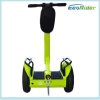 Lithium Battery 2 Wheel Electric Scooter Ecorider Stand Up Hover Board