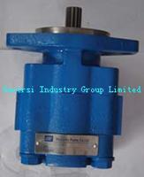 Buy cheap Hydraulic Pump,  Permco Pump,  Gear Pump,  Motor Pump,  P5100 product