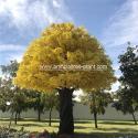 Large Fiberglass Artificial Ginkgo Tree High Temperature Resistance for sale