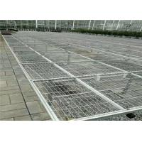 Quality Seedbed System Greenhouse Rolling Benches For Multi Span Agricultural Greenhouse for sale