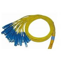China 24 Fiber Breakout Optical Fiber Patch Cord PVC Jacket , Universal Fiber Optic Jumper on sale