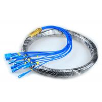 China CATV Network Optical Fiber Pigtail 12 Core Fiber Outdoor SC Pigtail Waterproof on sale