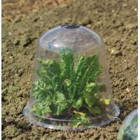 Quality 2012 hot sale Bell Jar for greenhouse HX35011N for sale