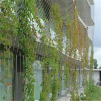 Buy cheap Steel wire rope climbing plant product