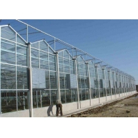 Quality Recycling Anti Snow Planting Multi Span Glass Greenhouse for sale