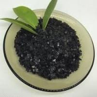 Quality Solid Performance Kelp Powder Fertilizer , Organic Water Soluble Fertilizer Black for sale