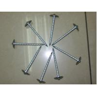 Quality Galvanized Roofing Nail for sale