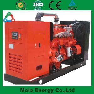 Hot Sale High performance biogas generator