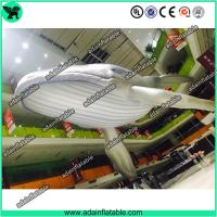 Quality Giant Inflatable Whale, Event Inflatable Whale,Inflatable Whale Replica for sale