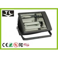 Quality Exterior Lighting Induction Outdoor Flood Light 100 Watt Eco-Friendly 3000K - 6000K for sale
