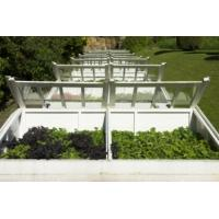 Quality Glass greenhouse bear heavy snow, strong struture for sale
