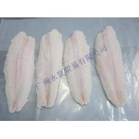 China frozen pangasius fillets on sale