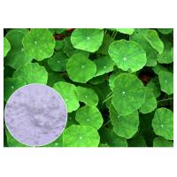 Quality Anti Inflammatory Gotu Kola Leaf Extract , Natural Centella Asiatica Leaf Extract for sale