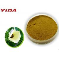 Quality Safety Pharmaceutical Grade Okra Extract Powder Activate Male Central Nervous for sale