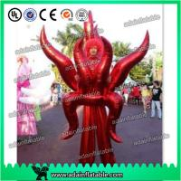 Quality Holiday Festival Parade Decoration Inflatable Cartoon Walking Costume Wing Inflatable for sale