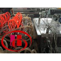 Quality wood and plastic composite foamed door panel making machine for sale
