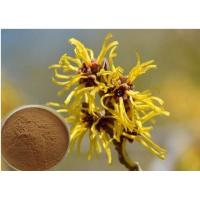 Quality Hamamelis Virginiana Extract Cosmetic Raw Materials For Moisturize / Skin Whitening for sale