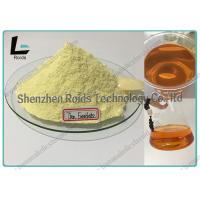 Muscle Growth  Raw Hormone Powders , Trenbolone Enanthate Powder CAS 10161-33-8