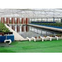 Quality Plastic Film Hydroponic Greenhouse Strong Ventilation Ability Convenient To Use for sale