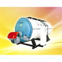 Quality WNS Series gas hot water boiler for sale