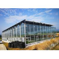 Quality Multi Span Fully Automatic Greenhouse Large Size With Hydroponic System for sale