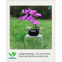 Quality Home Decoration Natural Looking Artificial Orchid for sale