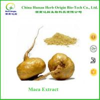 Buy cheap chinese male enhancement maca extract powder 10:1 ,100% Natual maca root powder extract product