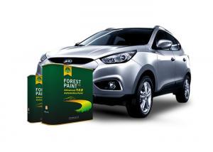 Quality Liquid Touch Up 1K Automotive Clear Coat Paint Heat Resistant for sale