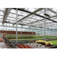 Quality Large Ventilated Area Forest Garden Greenhouse Galvanized Frame Finishing for sale
