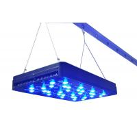 Quality 400w led light grow,80pcs 5w led grow light for plant growth top quality factory for sale