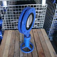 DN50 DN80 DN100 ductile iron body ss410 stem U type flange boat butterfly valve with vertical worm gear  factory