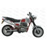 China SKYTEAM EEC 50CC AND 125CC APE MOTORCYCLE on sale