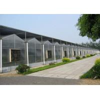 Quality Garden Flowers PC Sheet Greenhouse , Farm Vegetables Flowers Multi Span Greenhouse for sale