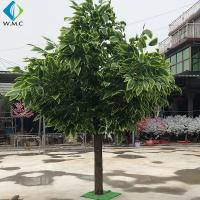 Home Decoration Fake Mango Tree 3m Height Customized Design for sale