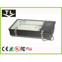 Quality Aluminum Reflector Induction Tunnel Lighting High Efficiency 200W - 300W for sale