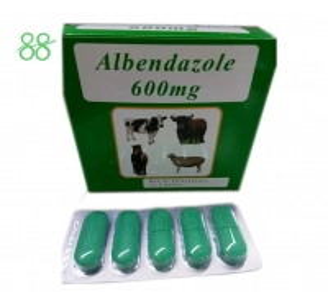 Quality Albendazole 600ml Veterinary Antibiotics for sale