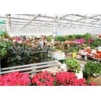 Quality Single Span Ecological Greenhouse , Large Glass Greenhouse Aluminium / Steel Metal Type for sale