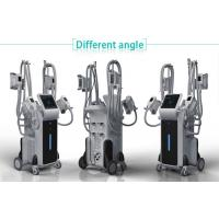 China best bodybuilding cryosuction weight loss 4 cryo handles cryolipolysis apparatus on sale