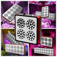 Quality Maximum Yield indoor garden and hydroponic CIDLY LED Best LED Grow Lights Reviews 150w for sale
