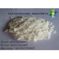 CAS 315-37-7 Testosterone Enanthate Test E Powder Legal Bodybuilding Supplements