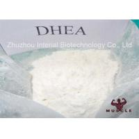 Pharm Grade Homebrew Steroids Pure DHEA Powder For Gain Strength CAS 481-29-8
