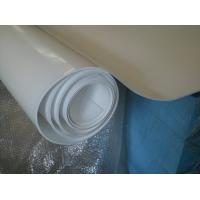 China 70shore A Colored Plastic Sheet Expand PTFE Sheet For Pharmaceutical , Chemical on sale