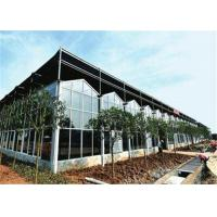 Quality Large Size Agricultural Glass Greenhouse 3m - 6m Side Height Stable Structure for sale