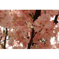 China 2017 china factory sell well wedding decorative large silk  Artificial flower Cherry Blossom Treen on sale