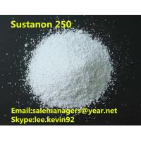 China Purity 99% Test Sustanon 250 White  powder For Bodybuilding GMP Certified on sale