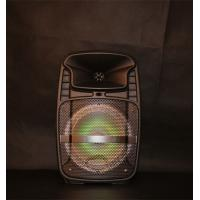 Quality Rechargeable Lithium Battery Portable Trolley Speakers With Fm Radio Function for sale